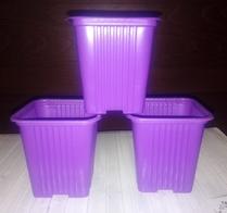Горшок для рассады фиолетовый 10 шт