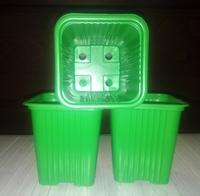 Горшок для рассады зеленый квадр. 0,45л 10 шт