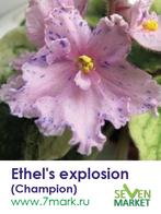 Ethel's explosion