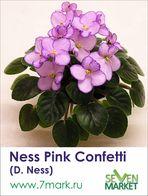 Ness Pink Confetti