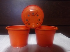 Горшок для рассады оранжевый 0,26 10 шт
